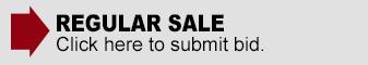 Regular Sale